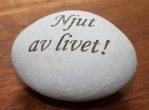 En sten med texten njut av livet.